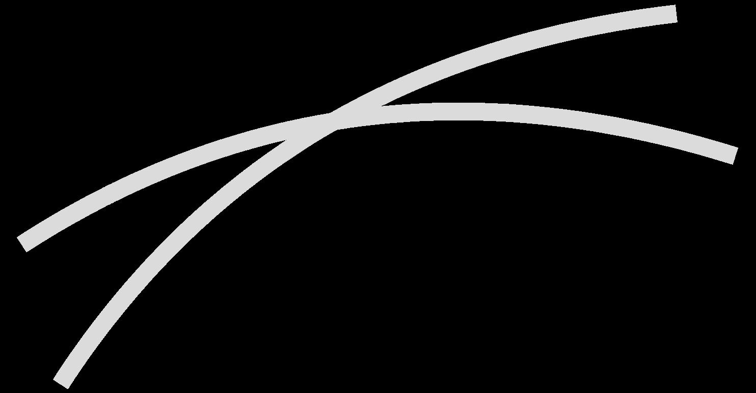 scholer-wisch
